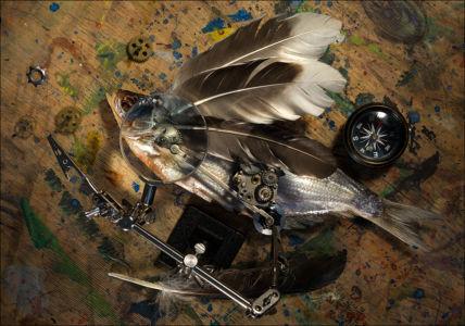 Летучая рыба. Прототип.