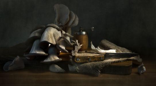Про грибы и старую перечницу